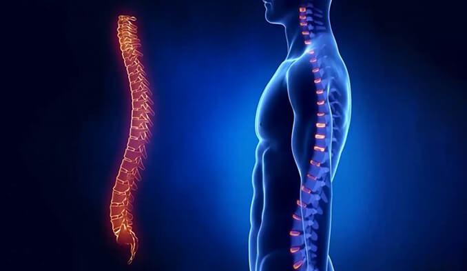 Травма на гръбнака - превю